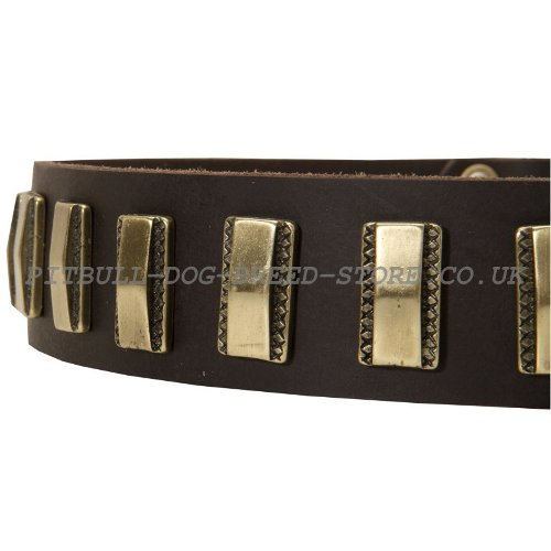 Custome Made Leather Dog Collars
