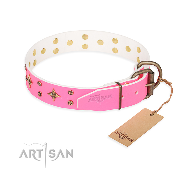 Cute Dog Collars