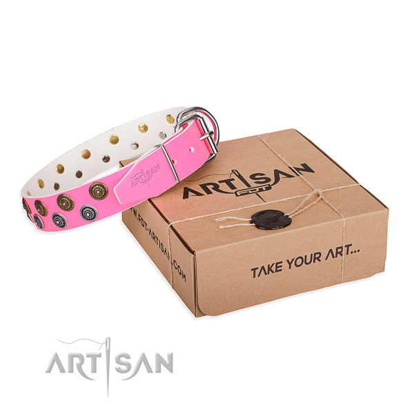 Decorated Dog Collars
