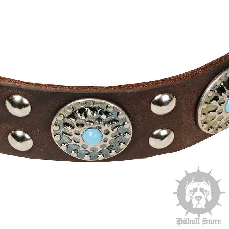 When Did Dog Collars Created