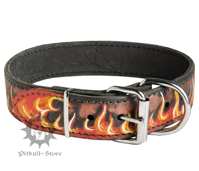 Flame Dog Collar Personalised Dog Collar