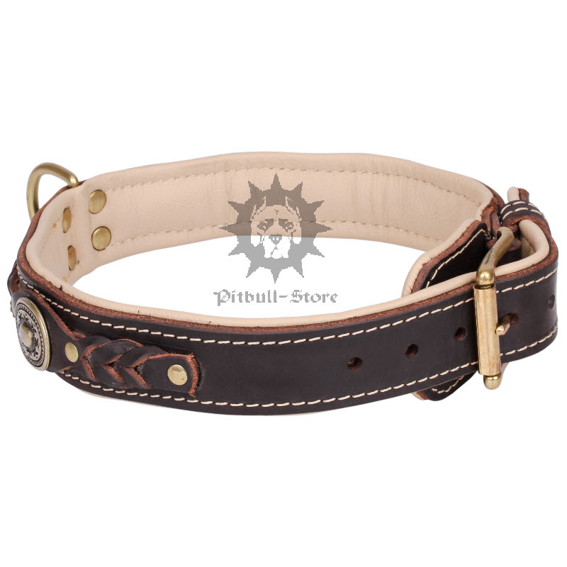 Padded Dog Collar Designer Dog Collar 163 56 20