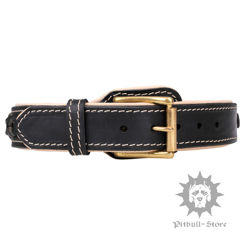 Padded dog collar designer dog collar - Designer small dog collars ...