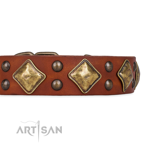 Designer Leather Dog Collars