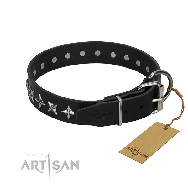 Designer Pitbull Dog Collars