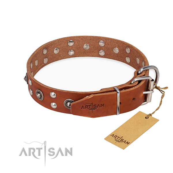 Dog Collar Designs