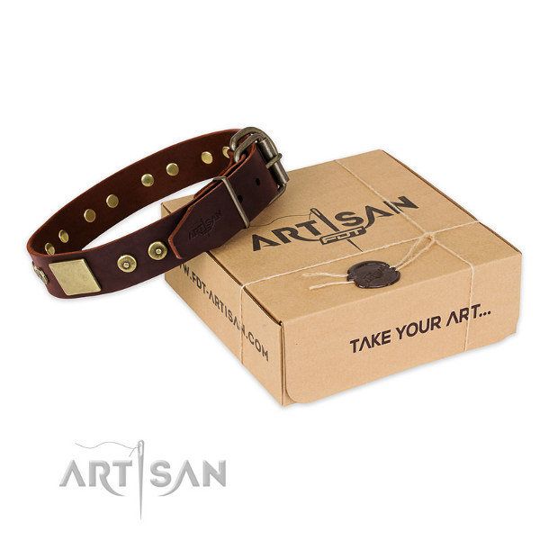 Dog Collar for a Pitbull