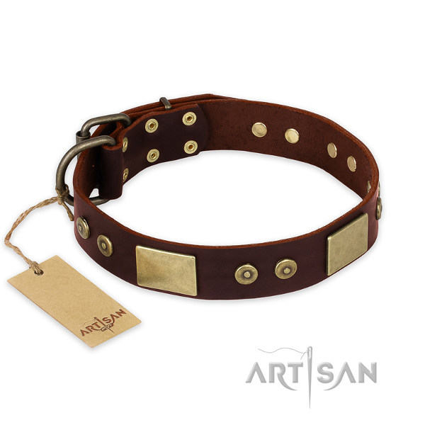 Dog Collar for Pitbulls
