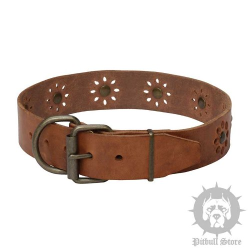 Leather Dog Collar Flowers