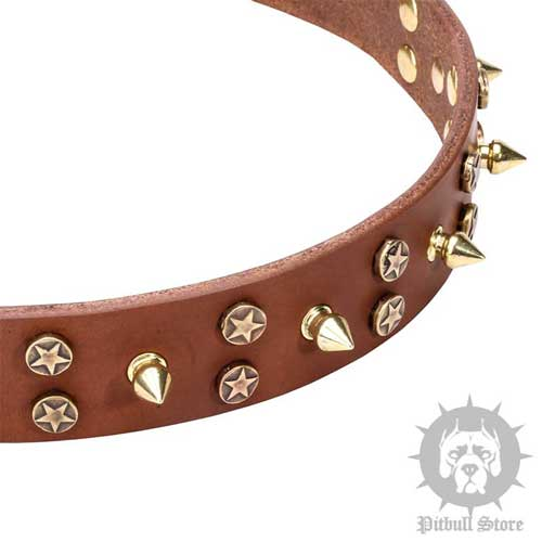 Dog Collar with Stars & Spikes