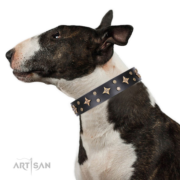 Dog Collar with Stars