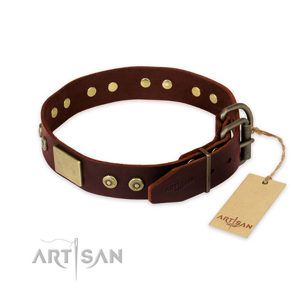 Dog Collars for a Pitbull