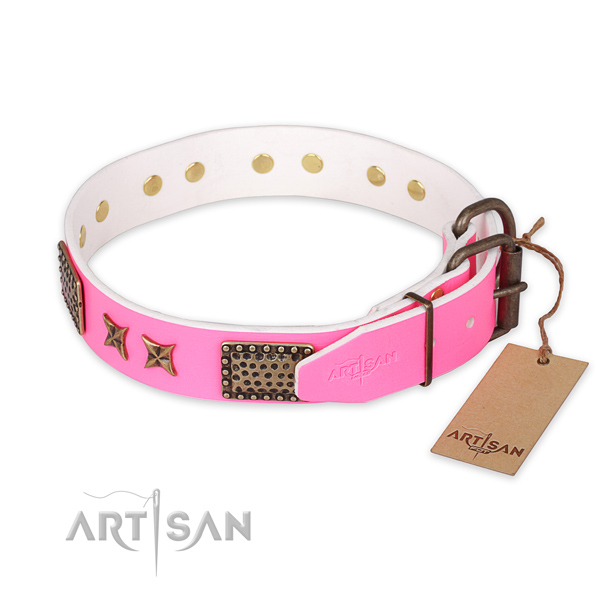 Dog Collars for Big Dogs