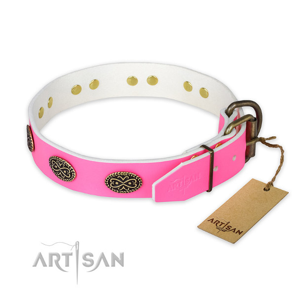 Dog Collars for Female Pitbulls