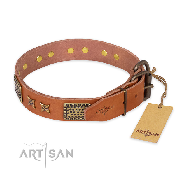 Dog Collars Unique