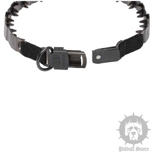Pitbull Training Collar