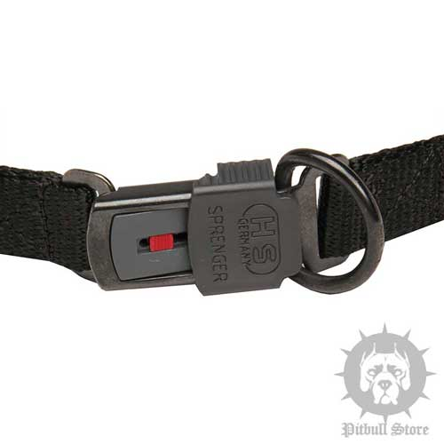 Prong Collars for Dogs