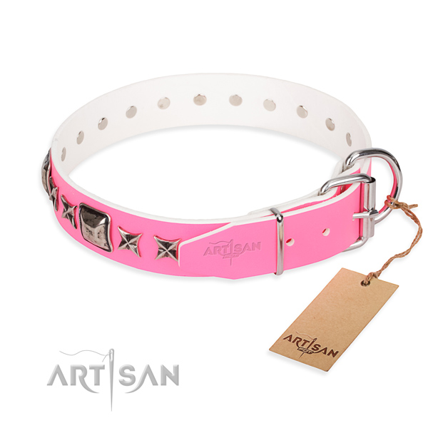Exclusive Dog Collars