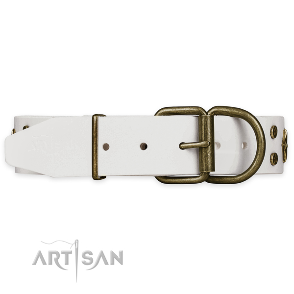 Fancy Dog Collars for Large Dogs
