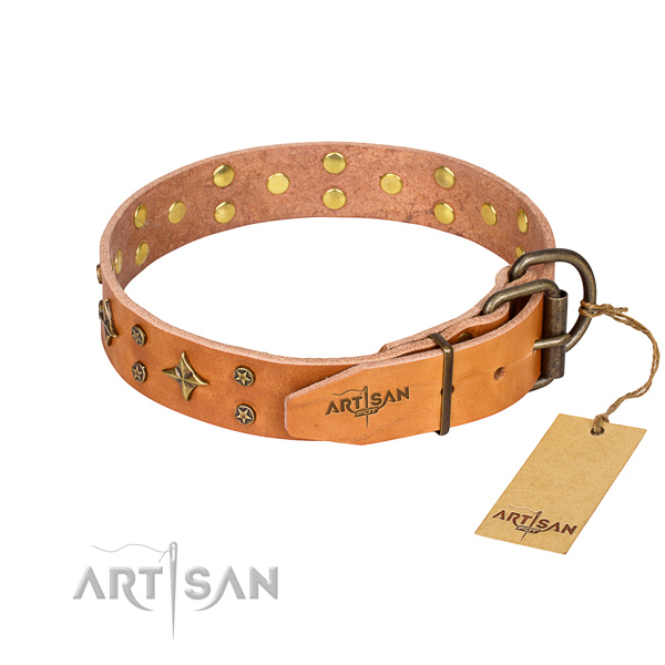 Fancy Leather Dog Collars
