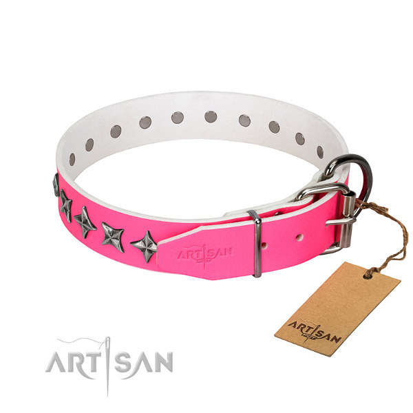 Female Pitbull Collars