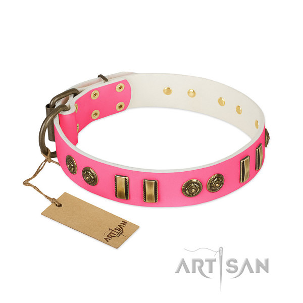 Female Pitbull Dog Collar