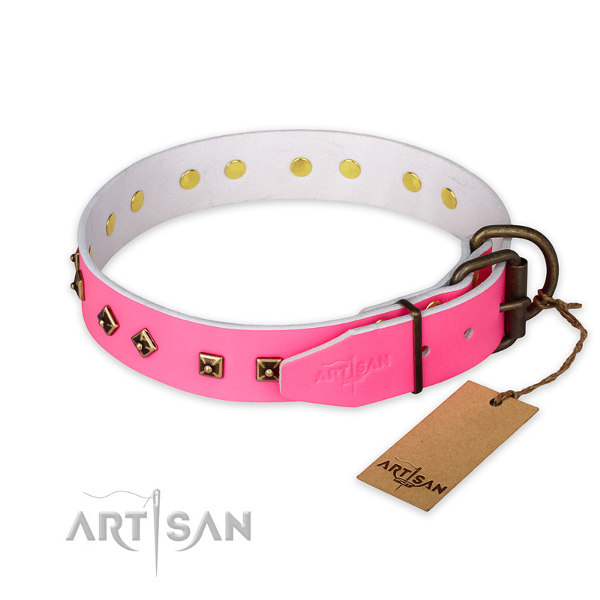 Female Staffy Collars