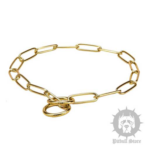 Brass Dog Collar