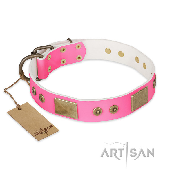 Pitbull Leather Collar