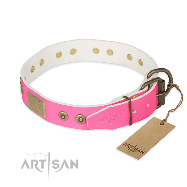 Girl Dog Collars for Pitbulls