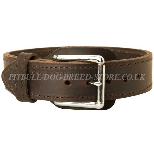 Leather Agitiation Dog Collar