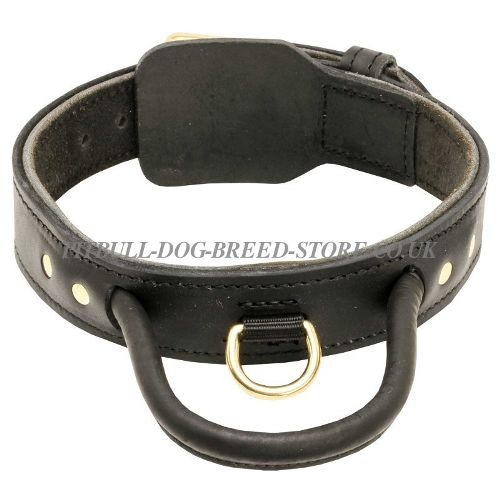 Dog Collar with Handle for Pitbull Behaviour
