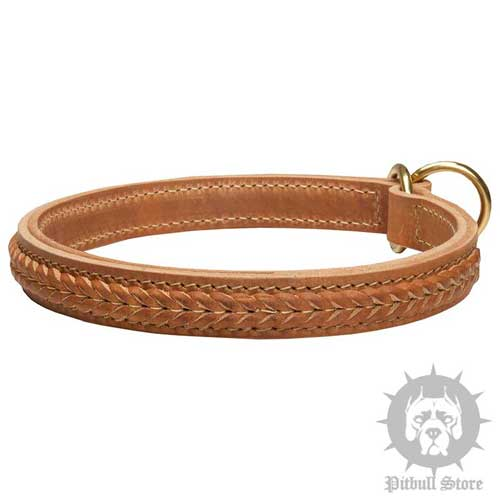 Leather Choke Collar