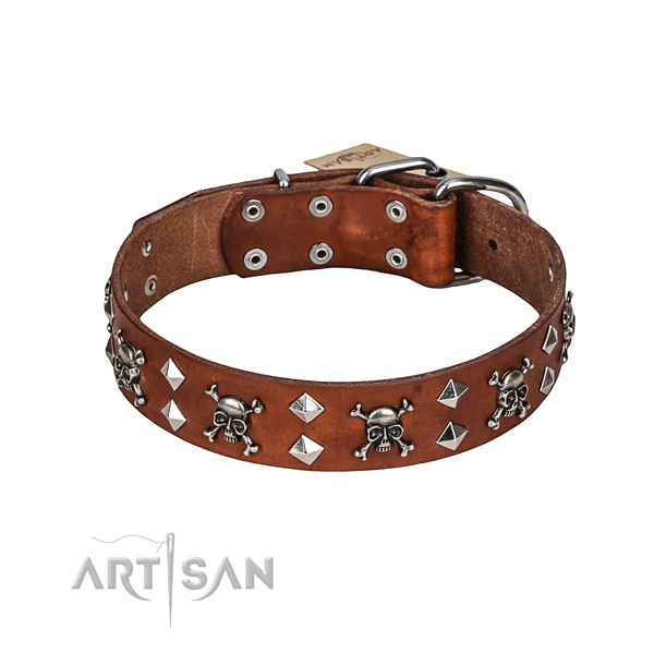 Leather Custom Dog Collar