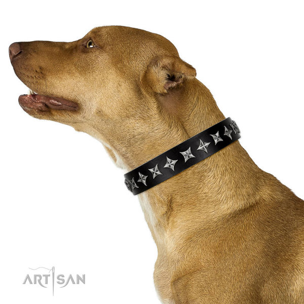 Leather Dog Collar for Pitbull