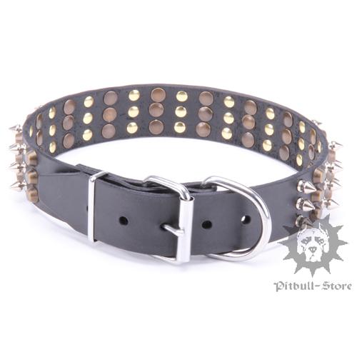 Designer dog collar bull terrier collar 2016 - Designer small dog collars ...
