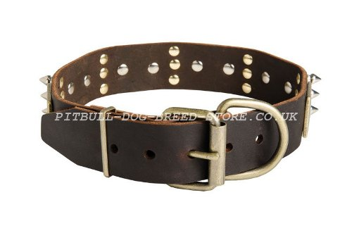 Ultimate Dog Collar UK