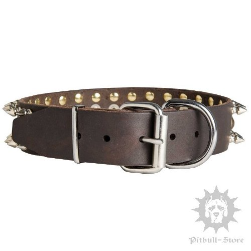 Leather Dog Collars UK