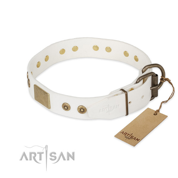 Leather Pitbull Collars UK