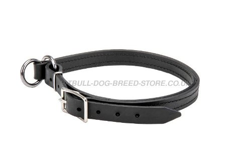 Leather Slip Collars for Dogs