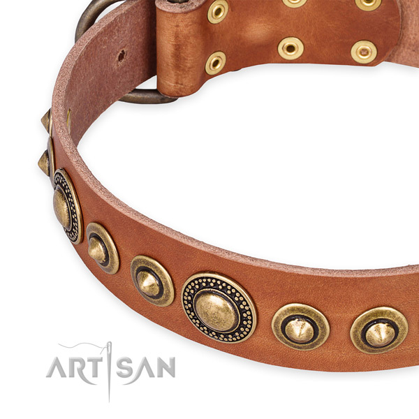 Leather Staffy Collars
