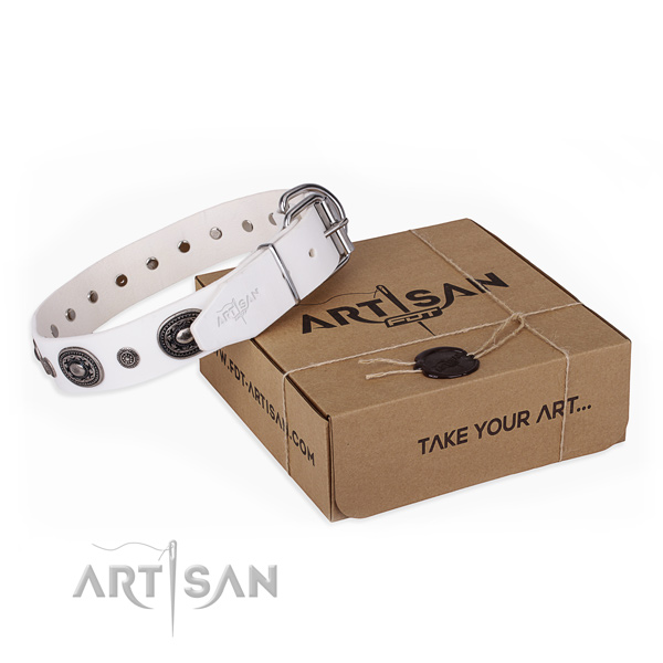 White Dog Collar