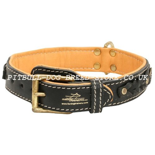 Luxury Leather Dog Collar UK