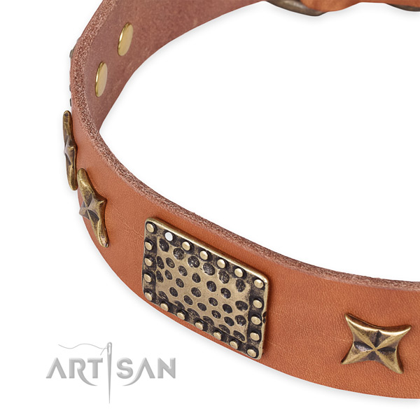 Luxury Dog Collars and Leashes