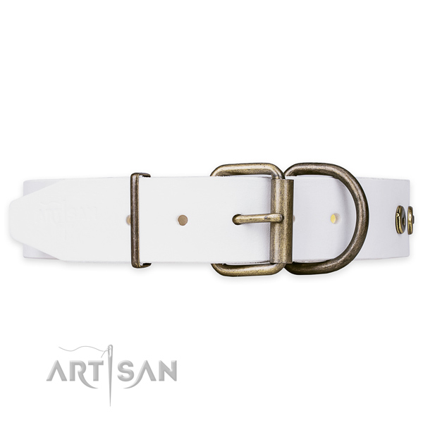 Luxury Pet Collars
