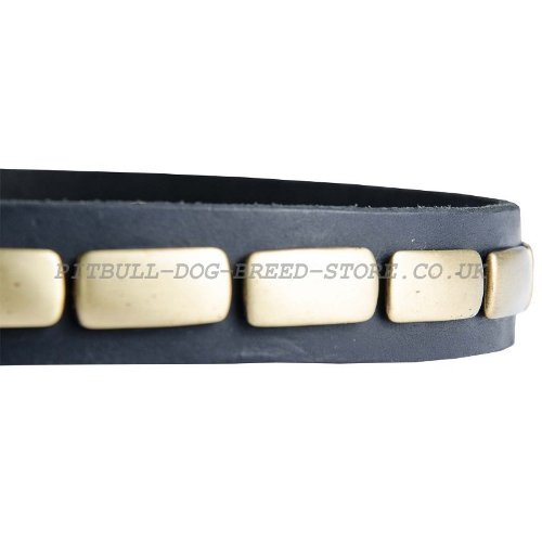 Narrow Leather Dog Collar