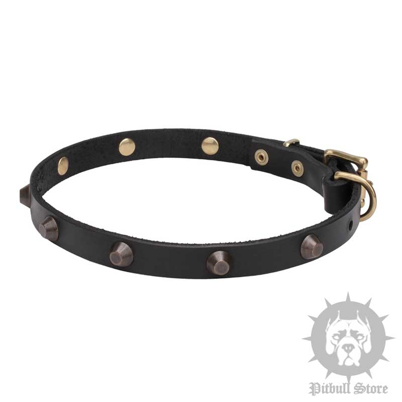 How To Make A Weighted Dog Collar