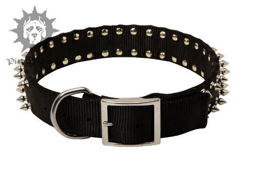Spiked Dog Collar UK