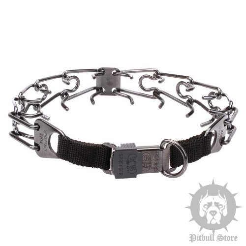 Pinch Collar for Pitbulls