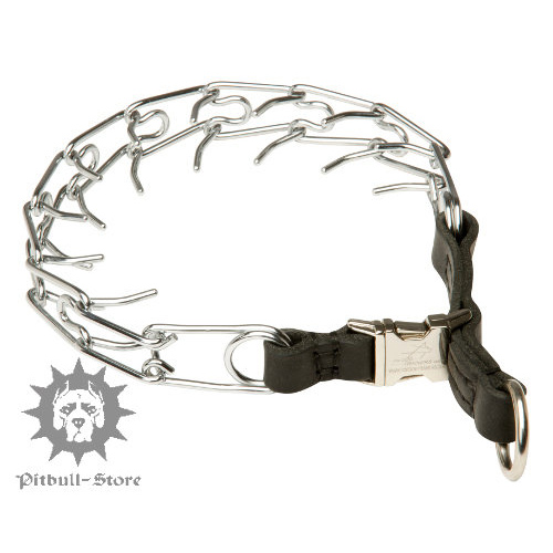 Pinch Dog Collar